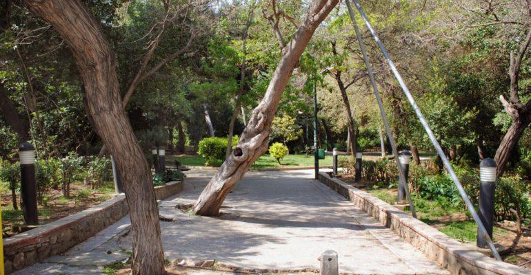 Άλσος Παγκρατίου: Ένας «δασικός πνεύμονας» στην Αθήνα