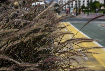 Η Ανοιχτή Πόλη για τη διαπλάτυνση της Πανεπιστημίου: Η δαπανηρή επιμονή της δημοτικής αρχής σε μια αποτυχημένη ιδέα